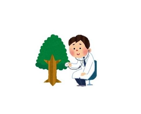 樹木医技術普及講座潜入レポート part1